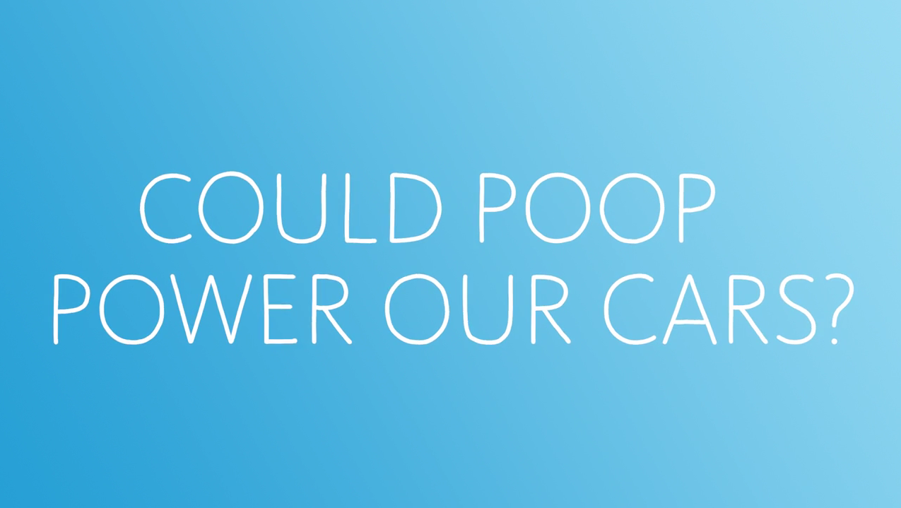 Can Poop Power Cars1